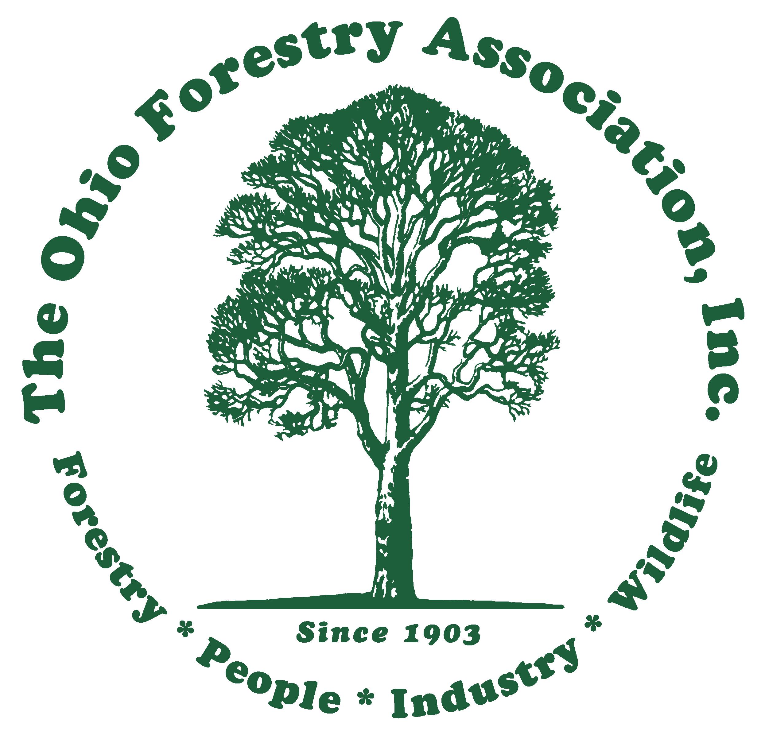 Ofa Logo Green 01